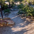 A huge petrified tree lays across the trail.- Escalante Petrified Forest State Park + Campground