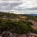 Morning near Walcott Lake.  - Naturalist Basin Hike