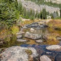 Stream crossing on the way to Morat Lakes.  - Mount Agassiz Hike