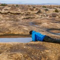 Pothole Point in Canyonlands National Park is where you can find prehistoric shrimp in the pools.- Indian Creek Corridor