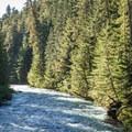Cheakamus River.- Helm Creek to Rubble Creek Hike