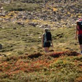 In the fall, the high alpine terrain is very colourful.- Helm Creek to Rubble Creek Hike