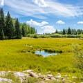 Beaver Lake.- Burlfriends Trail Hike