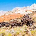 Amazing contrasts seen from Lava Flow Trail, Snow Canyon State Park.- Snow Canyon State Park