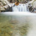 The water is an exceptional emerald green.- Honey Hollow Falls