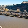 The Colorado River in all its glory.- Kokopelli Loops Mountain Bike Trails: Rustler's Loop