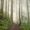 - Little Hamilton Mountain Hike