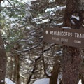 The Wamphoofus Trail ducks the summit in case of foul weather.- Maple Ridge + Butler Lodge Loop