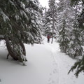 Skinning to the bowl on Tumalo Mountain. - Tumalo Mountain Backcountry Skiing + Snowboarding