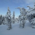 Tumalo Mountain snowfall.- Tumalo Mountain Backcountry Skiing + Snowboarding