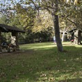 Picnic area at Temescal Gateway Park.- Temescal Gateway Park