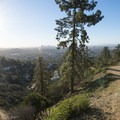 East Observatory Trail.- Griffith Observatory Hike via East Observatory Trail