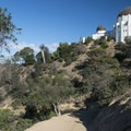 East Observatory Trail, Griffith Park.- Griffith Observatory Hike via East Observatory Trail
