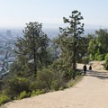 Hikers along the East Observatory Trail, Griffith Park.- Griffith Park