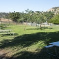 Picnic area at Lake Hollywood Park.- Lake Hollywood Park