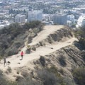 Hiking trails within Runyon Canyon Park.- Runyon Canyon Park