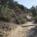 Short trail leading to Indian Rock just off of Mulholland Drive.- Runyon Canyon Road Hike