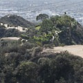 View looking down of Runyon Canyon Road from Indian Rock.- Runyon Canyon Road Hike
