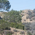 View of Indian Rock, the top of Runyon Canyon Park.- Runyon Canyon Road Hike