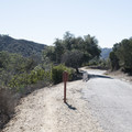 Upper portion of Franklin Canyon Drive within Franklin Canyon Park.- Franklin Canyon Park