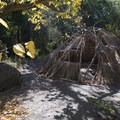 Replica of a Chumash dwelling in Franklin Canyon Park.- Franklin Canyon Park