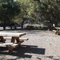 Day use picnic area adjacent to the Sooky Goldman Nature Center.- Franklin Canyon Park
