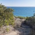 Trail through the coastal chaparral area of Malibu Bluffs Park.- Malibu Bluffs Park