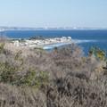 Coastal chaparral area of Malibu Bluffs Park.- Malibu Bluffs Park