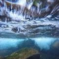 Underwater in the creek.- Bear Creek Falls Hike