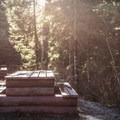 Picnic area at Alexander Falls.- Alexander Falls