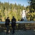 The viewing platform at Alexander Falls.- Alexander Falls