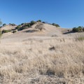 Grasslands along High Road in Malibu Creek State Park.- Rock Pool Swimming Hole