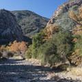 Malibu Creek, Malibu Creek State Park.- Rock Pool Swimming Hole