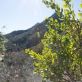 En route to the M*A*S*H site, Malibu Creek State Park.- M*A*S*H TV Set Hike