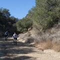 Mountain bikers along Crags Road, Malibu Creek State Park.- M*A*S*H TV Set Hike