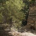 Mott Adobe Ruin off of Mott Road, Malibu Creek State Park.- Chaparral Trail Loop Hike