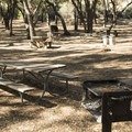 Tapia Park Day Use Area, Malibu Creek State Park.- Tapia Park Day Use Area