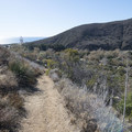 Nicholas Flat Trail, looking back at Leo Carrillo State Park Campground.- Nicholas Flat to Willow Creek Loop Hike