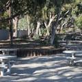Day use picnic area at Nicholas Canyon County Beach.- Nicholas Canyon County Beach