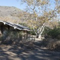 Restroom and shower facilities at Leo Carrillo State Park Campground.- Leo Carrillo State Park Campground
