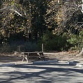 Typical campsite at Leo Carrillo State Park Campground.- Leo Carrillo State Park Campground