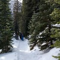 The trail up to Loch Vale. - The Loch Vale Snowshoe