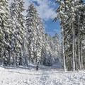 The trailhead to access the Newton Clark Moraine.- Newton Clark Moraine (Ridge Between) Backcountry Ski
