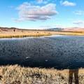 Fish Lake Valley Hot Well.- Fish Lake Valley Hot Well