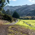 The Weiler Ranch Road is a popular trail.- Hazelnut + Weiler Ranch Trail Loop Hike