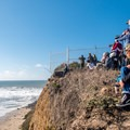 Big waves bring lots of onlookers to Mavericks.- Mavericks Beach