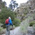 Hiking up the canyon.- Notch Peak Hike