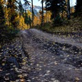 The road turns into a single lane, doubletrack trail after approximately 6 miles.- Dallas Divide Scenic Route