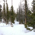 Snowshoeing to Loch Vale in Rocky Mountain National Park.- The Loch Vale Snowshoe