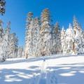 Backcountry skier on the ridge near Echo Lake.- Echo Lake Snowshoe